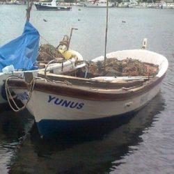 Yalova Tekne İlanları