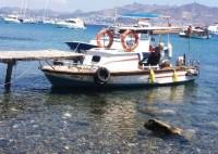 Ekonomik Balıkçı Teknesi