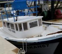 Acil Satılık Yeşil Ruhsatlı Balıkçı Teknesi