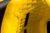 Azzurro Powerboat Catamaran - ZR12 Effect Yellow - Resim9