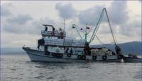 Ordu'da 18 Metre Gırgır Teknesi